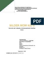 Fase I Formulacion Niria