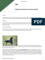 Blueprint Sample Page.pdf