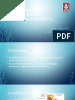 Nefropatias glomerulares