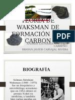 Teoria de Waksman
