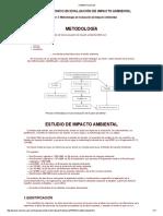 metodologia eia