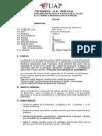 Silabus Metodolodia Enfermeria UAP