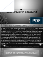 Enterobacter savazakii.pptx