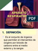 Sistema Respiratorio 2010