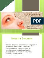 Administración de Proyectos Natura E