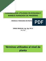 TERMINOLOGIA_PASTURAS