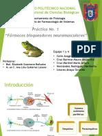 P1.FarmacologiaDeSistemas.seminario Final