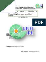 Práctica 2. Diseño y Estabilidad