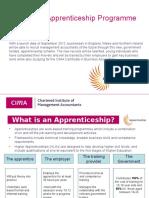 Apprenticeship Summary 2013