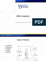 Anatomy+Lecture_2