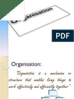 Organisation ppt.pdf