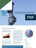 CCSA Briefing Leaflet