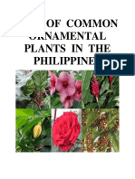 List of Common Ornamental Plants in the Philippines
