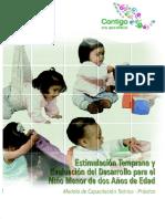 Formato Para Desarrollo Del Niño