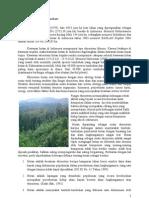 Ekologi Hutan (Tugas Mata Kuliah Ilmu Lingkungan)