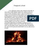 Incendiul.docx