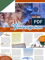 20206 Die Weihnachtsg 2011