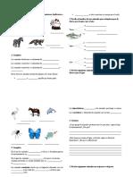 Tema 6 (los animales).docx