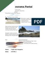 Puisi (Panorama Pantai)