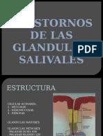 GLANDULAS SALIVALES