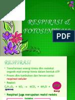6_fotosintesis_respirasi