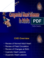 Kuliah Adult Congenital HD 2012