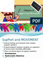Support systems in animals.pptx