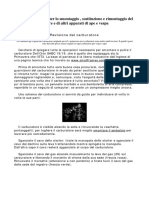 053 Manuale Completo Per Ape e Vespa Motore e Carburatore Ita