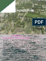 Inundatiile