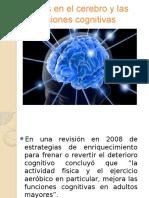 Efectos en El Cerebro y Las Funciones Cognitivas