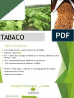 presentación 5 TABACO
