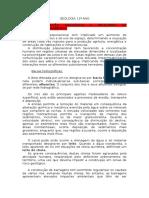 resumoglobalgeologia11ano_2 (2)