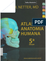 8b2f1d0a4 Atlas de Anatomia Humana - Netter - 5ªed