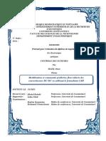 floue type 2.pdf