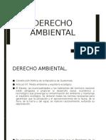 Derecho Ambiental.