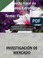 Presentación Proyecto Final Merca