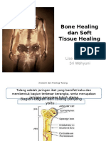 Bone Healing Dan Soft Tissue Healing