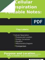 cellular respirtation foldable notes- 2016