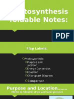 photosynthesis foldable notes- 2016
