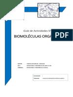 1°-Guía-Actividades-7.pdf