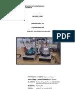 Laboratorio N4 Análisis Instrumental VF3