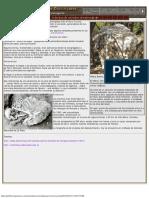 Creencias de los indios Comechingones.pdf