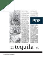 Tequila Su Sabor , Aroma