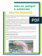 animales en extinsion.docx