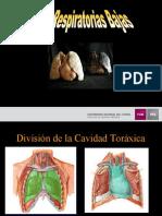 Laboratorio Vias Respiratorias Bajas (AGO-2012)