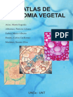 Atlas Anatomia Vegetal (Completo)