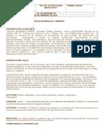 PLANEACION  estructuras IIIB