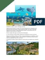 Ambiente acuático
