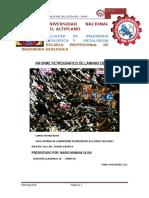 Informe de Petrografia