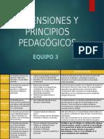 Dimensiones y Principios Pedagógicos